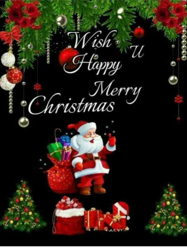 🎄मैरी क्रिसमस 🎅 - Wish Ku 0000000 Happy Merry pO00000 •Christmas - ShareChat