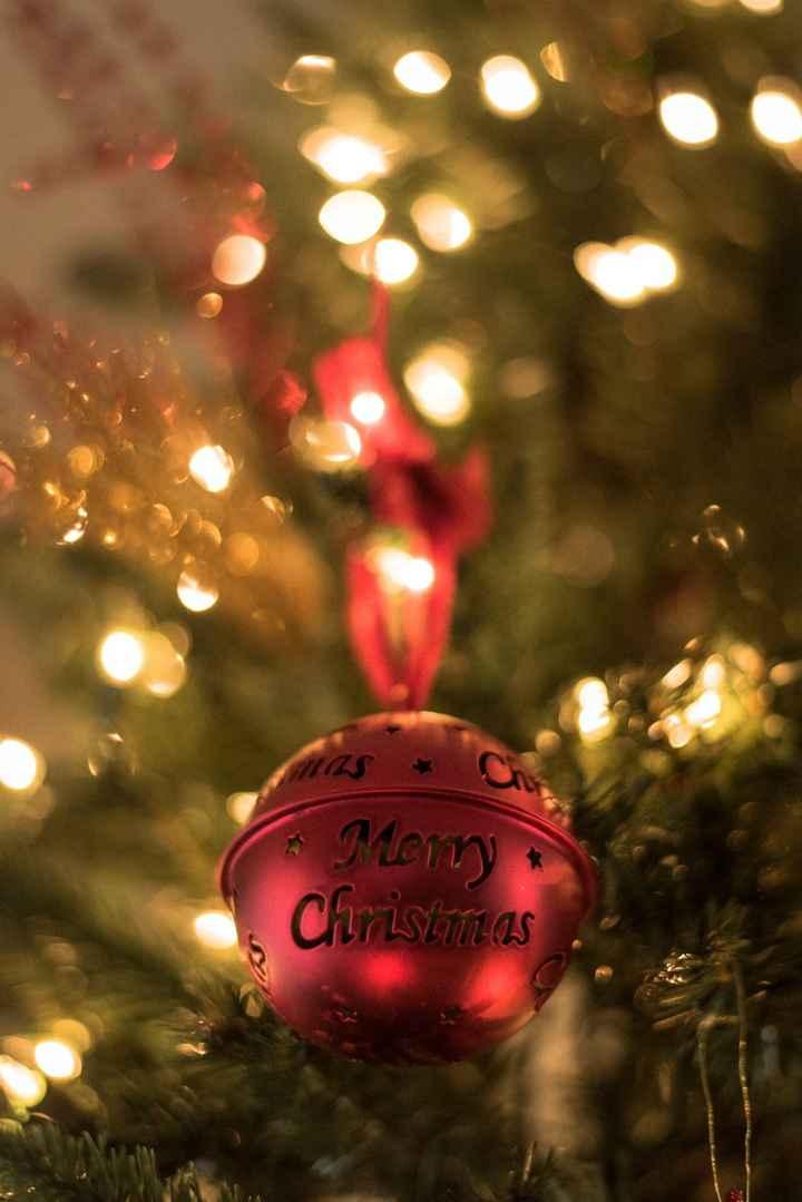 🎄मैरी क्रिसमस 🎅 - Menny Christmas - ShareChat