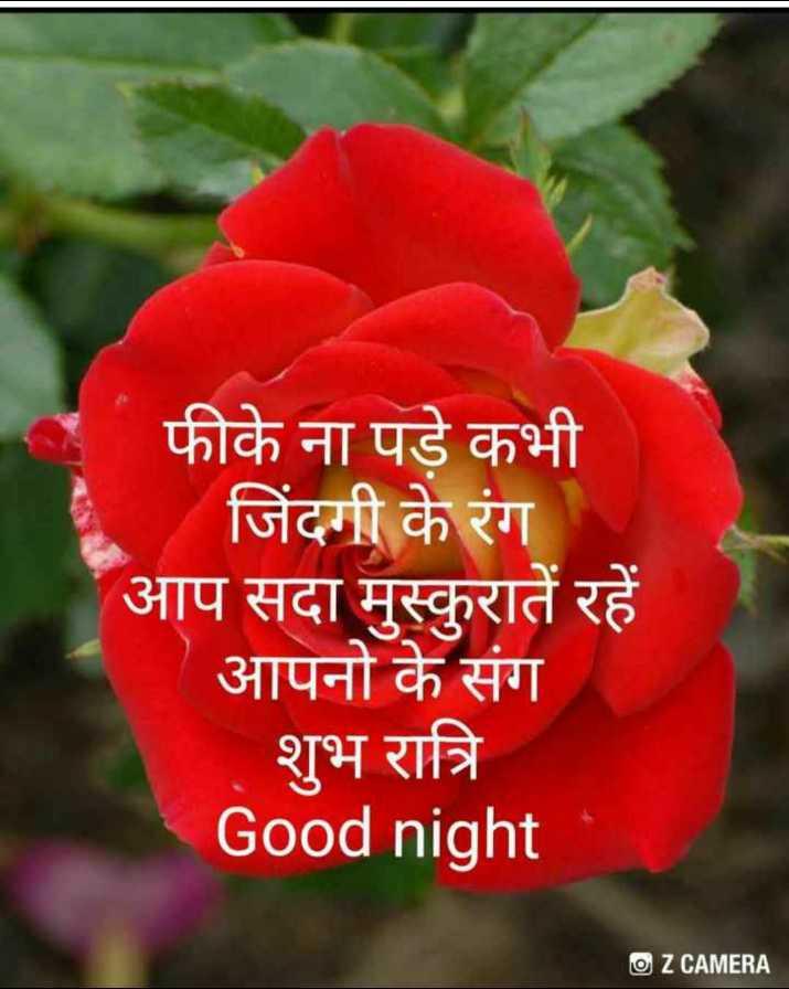 🙏 राम राम सा ! - फीके ना पड़े कभी जिंदगी के रंग आप सदा मुस्कुरातें रहें आपनो के संग शुभ रात्रि Good night O Z CAMERA - ShareChat