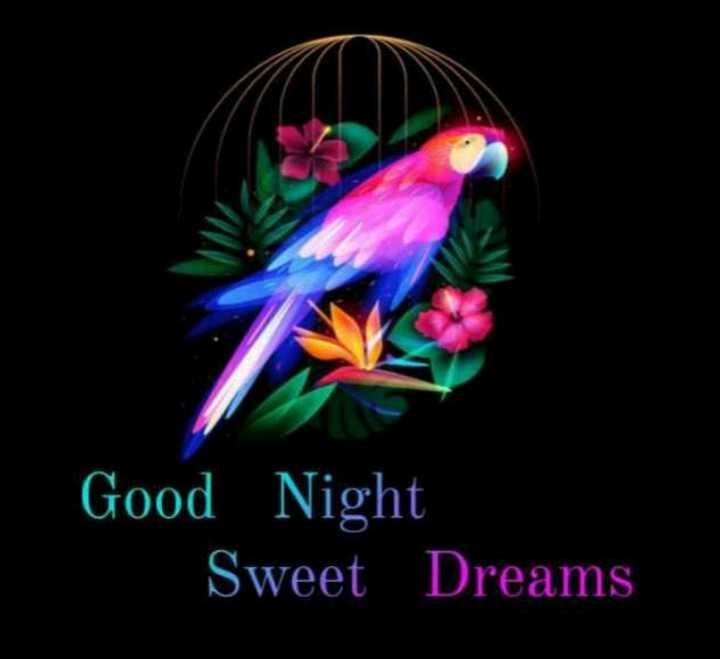 🙏 राम राम सा ! - Good Night Sweet Dreams - ShareChat