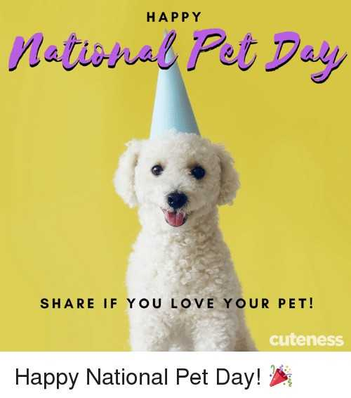 🐕राष्ट्रीय पाळीव प्राणी दिवस - HAPPY National Pet Daly SHARE IF YOU LOVE YOUR PET ! cuteness Happy National Pet Day ! - ShareChat