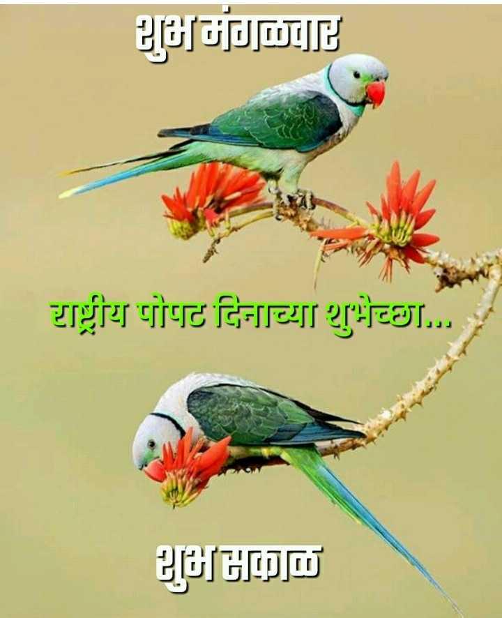 🦜राष्ट्रीय पोपट दिवस - शुभमंगळवार राष्ट्रीय पोपट दिनाच्या शुभेच्छा . . . . 2009ம் - ShareChat