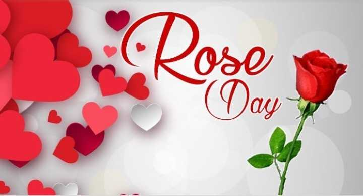 🌹रेड रोज डे - ( Day - ShareChat
