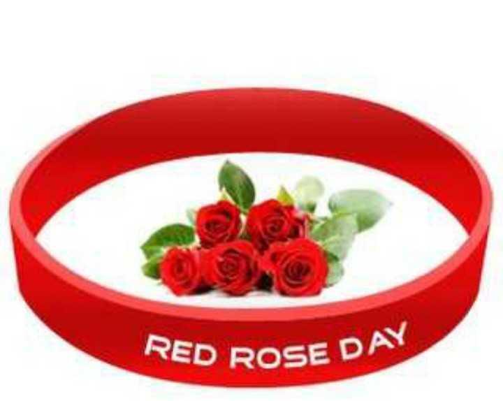 🌹रेड रोज डे - RED ROSE DA - ShareChat