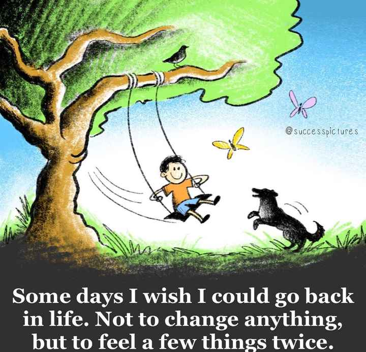 😏 रोचक तथ्य - @ successpictures Some days I wish I could go back in life . Not to change anything , but to feel a few things twice . - ShareChat