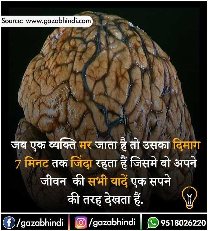 😏 रोचक तथ्य - Source : www . gazabhindi . com जब एक व्यक्ति मर जाता है तो उसका दिमाग 7 मिनट तक जिंदा रहता हैं जिसमे वो अपने जीवन की सभी यादें एक सपने _ _ _ की तरह देखता हैं . O / gazabhindi   O / gazabhindi   99518026220 - ShareChat