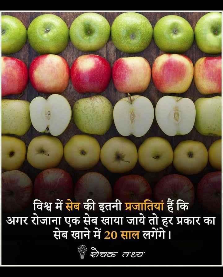 😏 रोचक तथ्य - 00000 विश्व में सेब की इतनी प्रजातियां हैं कि | अगर रोजाना एक सेब खाया जाये तो हर प्रकार का सेब खाने में 20 साल लगेंगे । ਦੇਬਲ ਦਾ - ShareChat