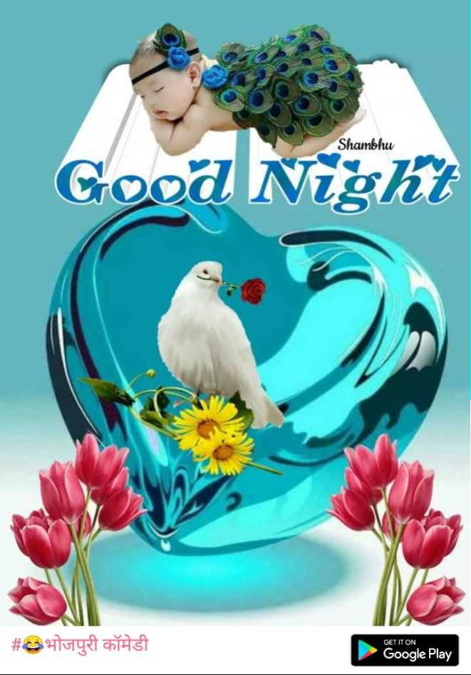 🌹रोज डे - Shambhu Good Night V # @ stotyst onAST GET IT ON Google Play - ShareChat