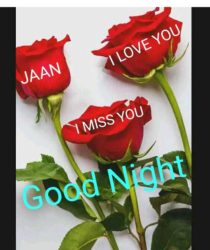 🎶 रोमांटिक गाने - I LOVE YOU JAAN I MISS YOU Good Night - ShareChat