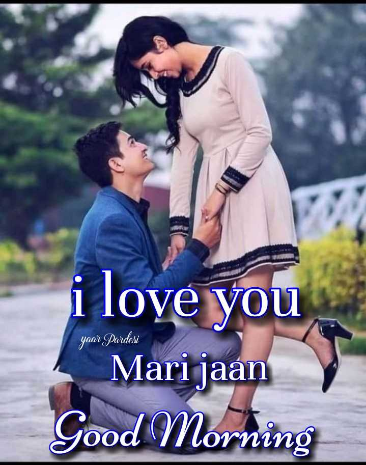 🎶 रोमांटिक गाने - yaar Pardesi i love you Mari jaan Good Morning - ShareChat