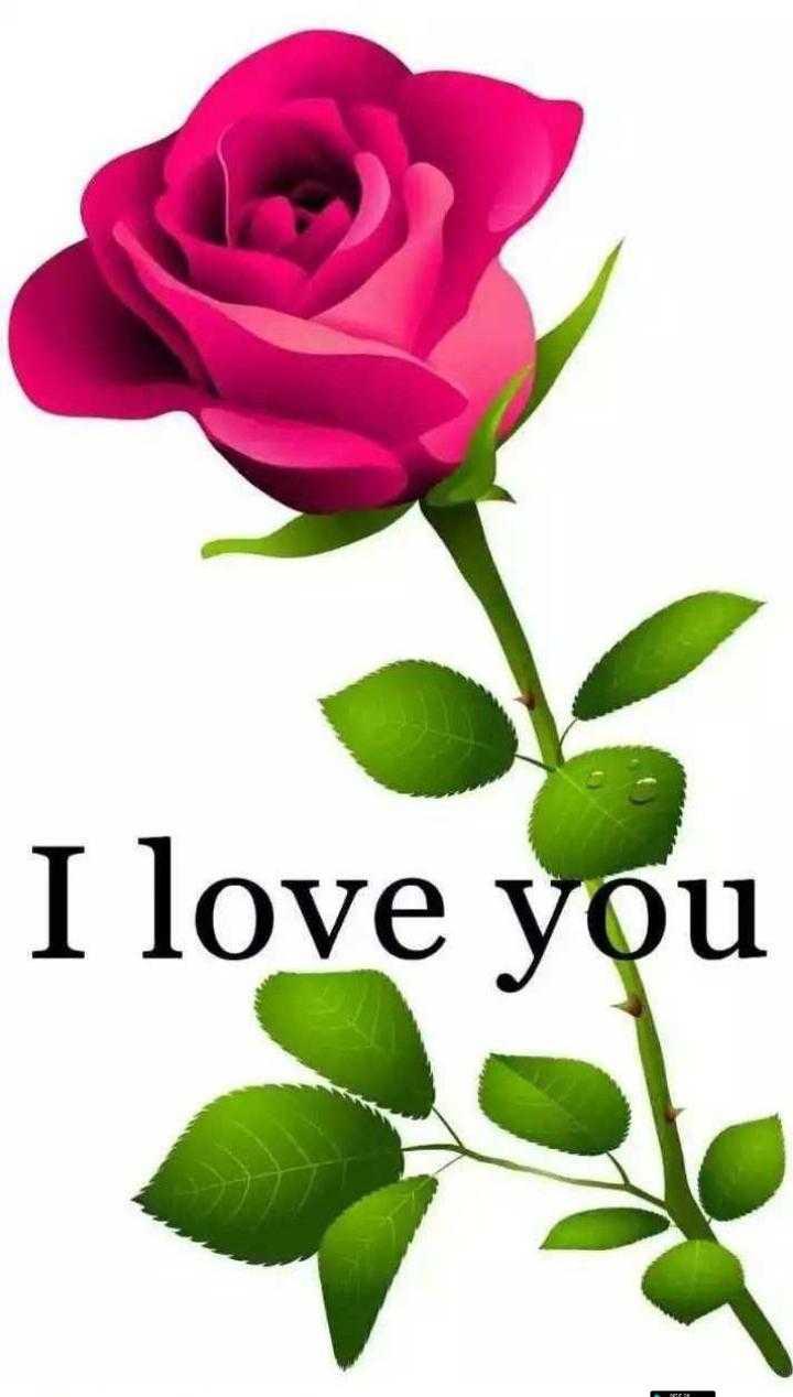 💖लव स्टेटस 💞 - I love you - ShareChat