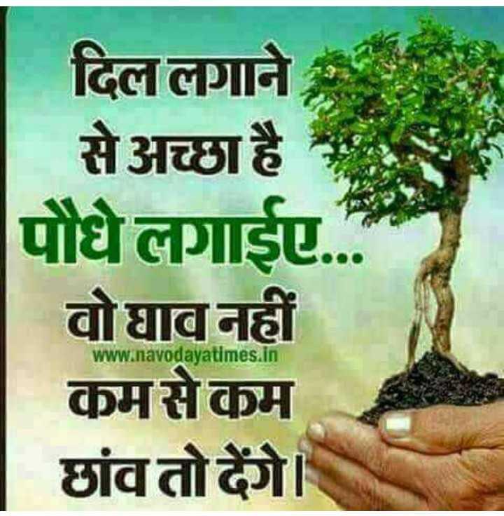 👉 लोगों के लिए सीख👈 - दिल लगाने से अच्छा है पौधे लगाईए . . . वोघाव नहीं कमसेकम छांव तोदेंगे । www . navodayatimes . in - ShareChat