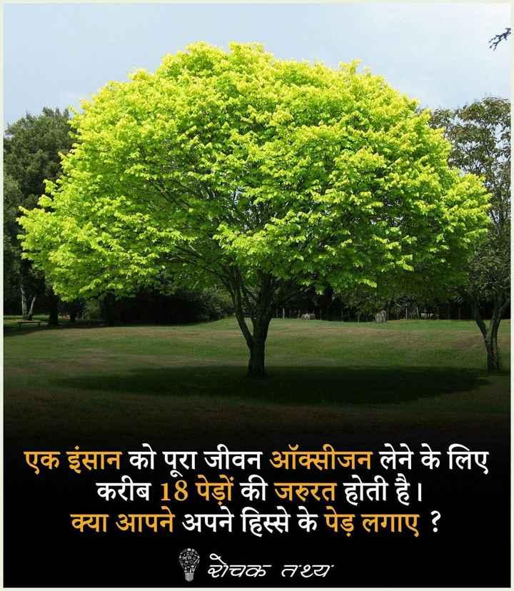 🌴🌳वन महोत्सव🌳🌴 - > एक इंसान को पूरा जीवन ऑक्सीजन लेने के लिए करीब 18 पेड़ों की जरुरत होती है । क्या आपने अपने हिस्से के पेड़ लगाए ? चक तथ्य - ShareChat