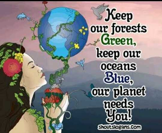 🌲 वन महोत्सव - Keep our forests Green , keep our oceans 3lue , our planet needs You ! Shoutslogans . com - ShareChat
