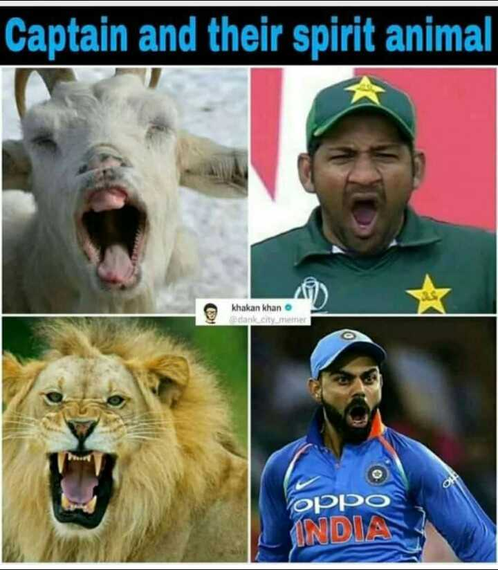 😁वर्ल्ड कप जोक्स - Captain and their spirit animal khakan khan @ dank city memer oppo INDIA - ShareChat