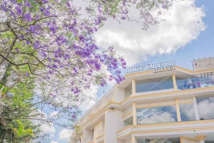 😎वर्ल्ड की बेस्ट बिल्डिंग - A NICE DREAM - ShareChat