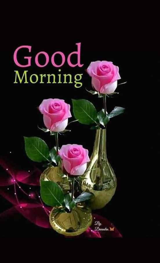 📹 वाइरल वीडियो - Good Morning By Drond . - ShareChat