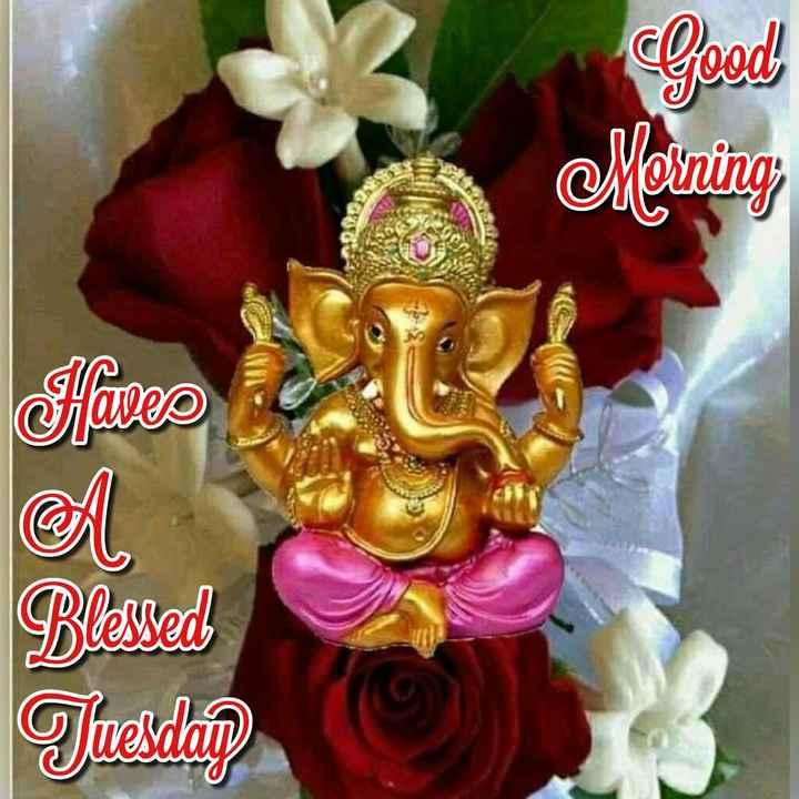 🌺विनायक चतुर्थी - Good Morning Sifaves Blessed Tuesdag - ShareChat