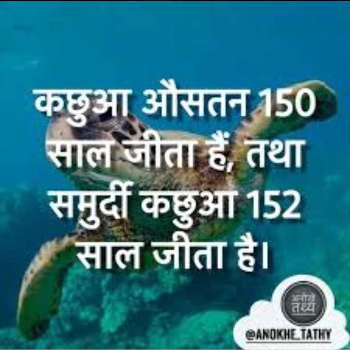 🐢 विश्व कछुआ दिवस - कछुआ औसतन 150 सालं जीता हैं , तथा समुदीं कछुआ 152 साल जीता है । ANOKHE TATHY - ShareChat