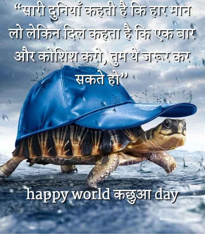 🐢 विश्व कछुआ दिवस - सारी दुनियाँ कहती है कि हार मान्न । लो लेकिन दिल कहता है कि एक बार और कोशिश करो , तुम ये जा कर । सकते हो । happy world chegat day - ShareChat