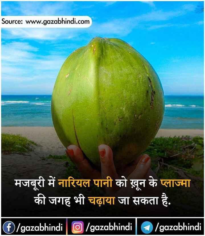 🙏 विश्व नारियल दिवस - Source : www . gazabhindi . com मजबूरी में नारियल पानी को खून के प्लाज्मा की जगह भी चढ़ाया जा सकता है . G / gazabhindi | O / gazabhindi | D / gazabhindi - ShareChat