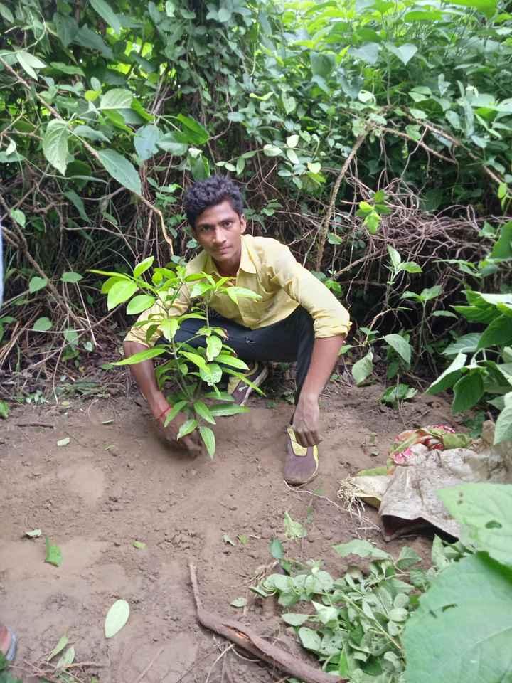 🌲 विश्व प्रकृति संरक्षण दिवस - ShareChat