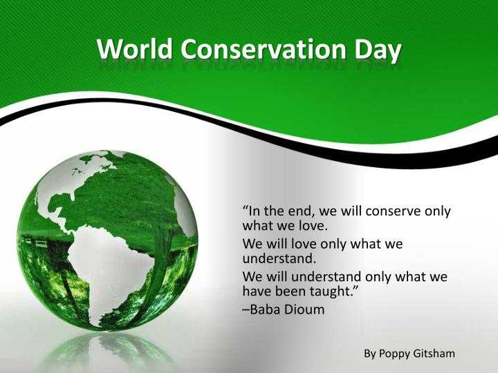 🌲 विश्व प्रकृति संरक्षण दिवस - World Conservation Day In the end , we will conserve only what we love . We will love only what we understand . We will understand only what we have been taught . - Baba Dioum By Poppy Gitsham - ShareChat