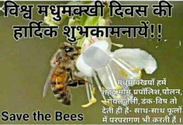 🐝 विश्व मधुमक्खी दिवस - - विश्व मधुमक्खी दिवस की हार्दिक शुभकामनायें ! ! मधुमक्खियाँ हमें शहद मोम , प्रपॉलिश , पोलन , रोयल जैली , डंक - विष तो देती ही हैं . साथ - साथ फूलों में परपरागण भी करती हैं । Save the Bees - ShareChat