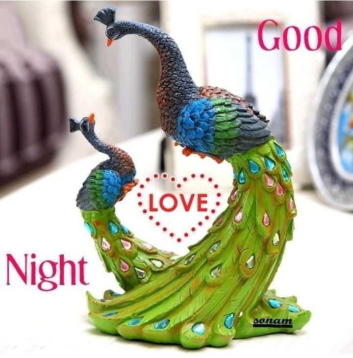 📸 वीडियो आर्टिस्ट - Good LOVE Night sonam - ShareChat