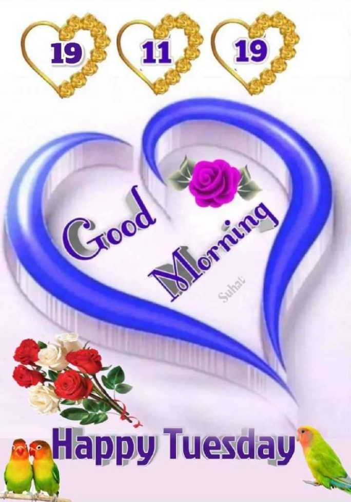 📲 वीडियोग्राफी - Good Morning Suhat Happy Tuesday - ShareChat