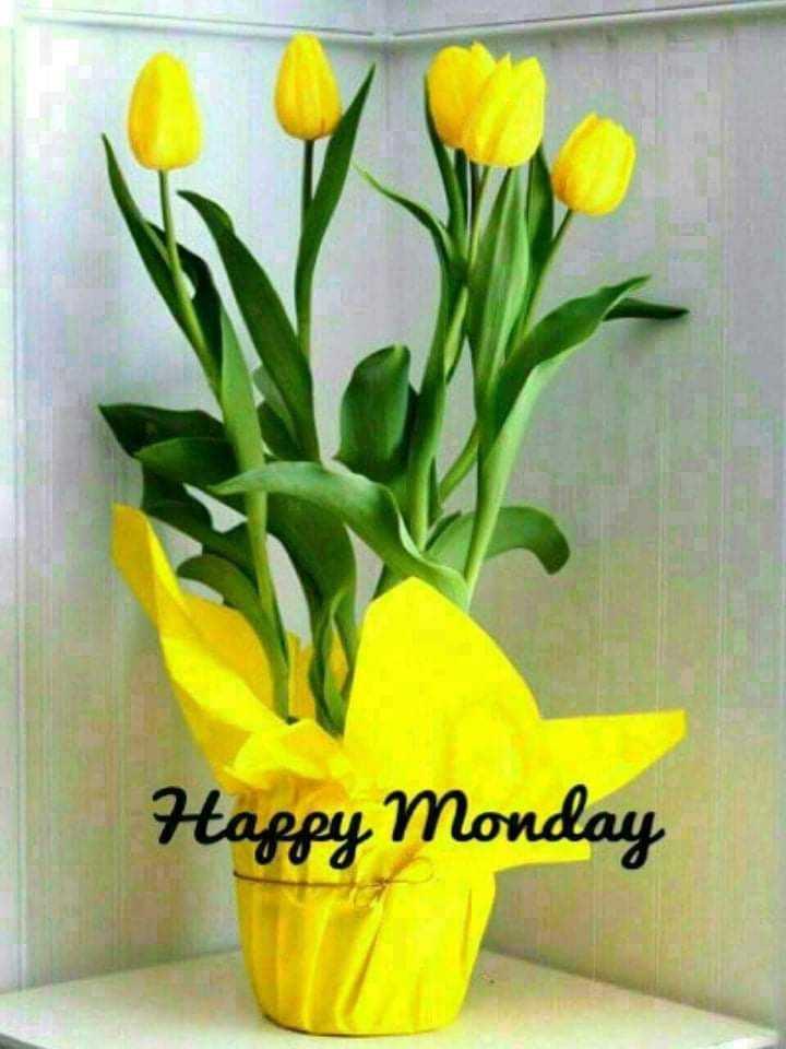 💐वीर संभाजी राजे बलिदान दिन - Happy Monday - ShareChat