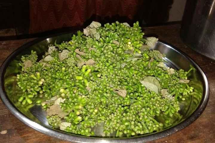 🥗 शुद्ध शाकाहारी भोजन Images jas - ShareChat - भारत का अपना भारतीय सोशल  नेटवर्क | 100% भारतीय एप्प !