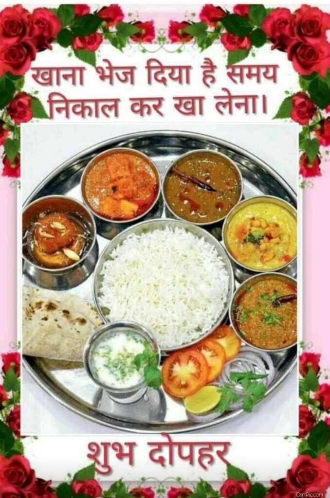 🥗 शुद्ध शाकाहारी भोजन - खाना भेज दिया है समय निकाल कर खा लेना । शुभ दोपहर Osmicoom - ShareChat