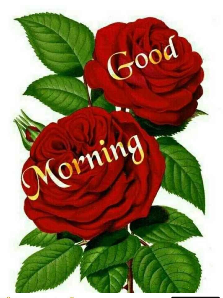 🙏शुप्रभात🙏 - Good Morning - ShareChat