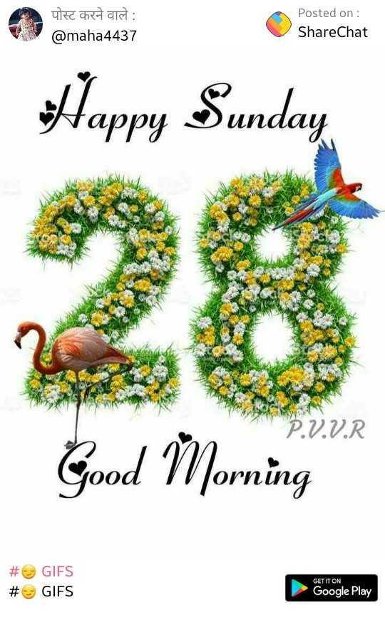 💐शुभकामनाएं💐 - पोस्ट करने वाले : @ maha4437 Posted on : ShareChat Happy Sunday X ho P . V . V . R Good Morning # # GIFS GIFS GET IT ON Google Play - ShareChat
