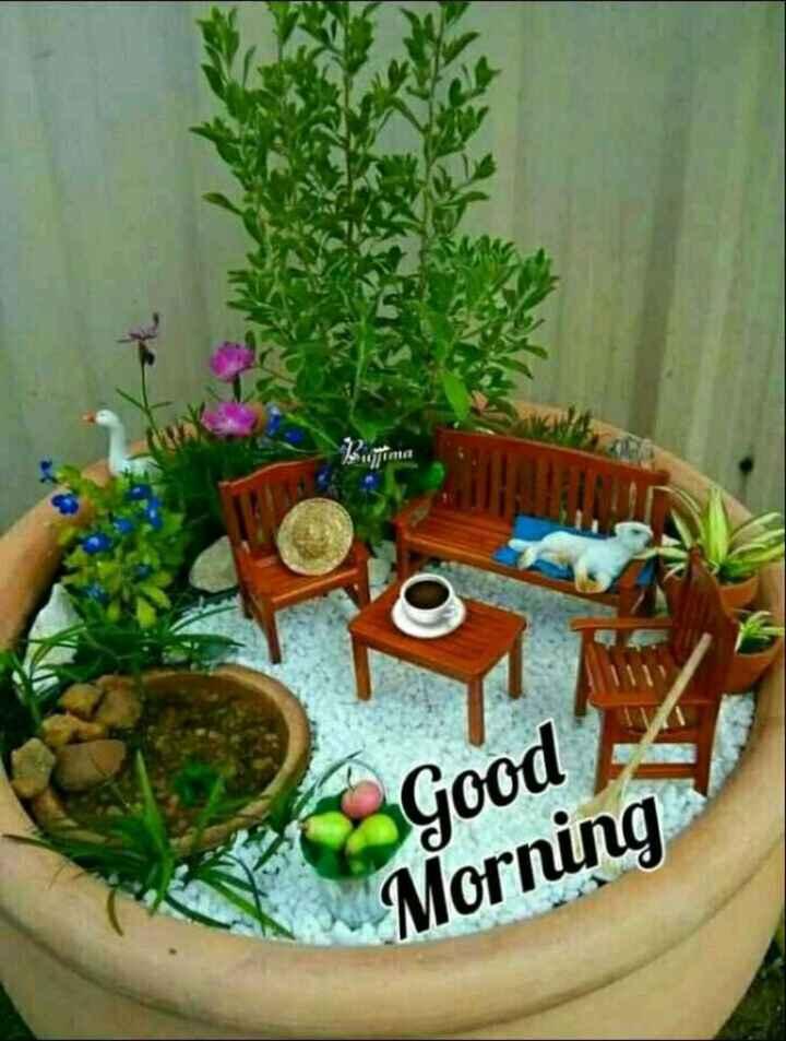🌷शुभ गुरुवार - Good Morning - ShareChat