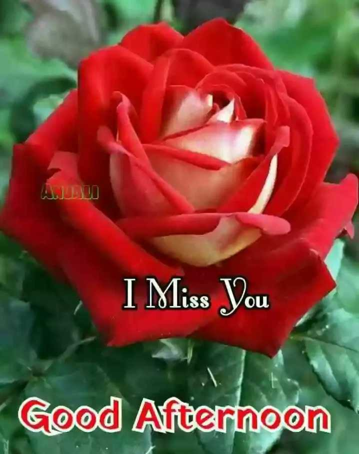 🕛 शुभ दोपहर☺ - I Miss You Good Afternoon - ShareChat
