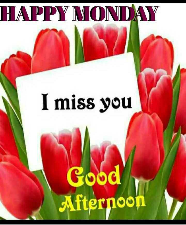 🕛 शुभ दोपहर☺ - HAPPY MONDAY I miss you Good Afternoon - ShareChat