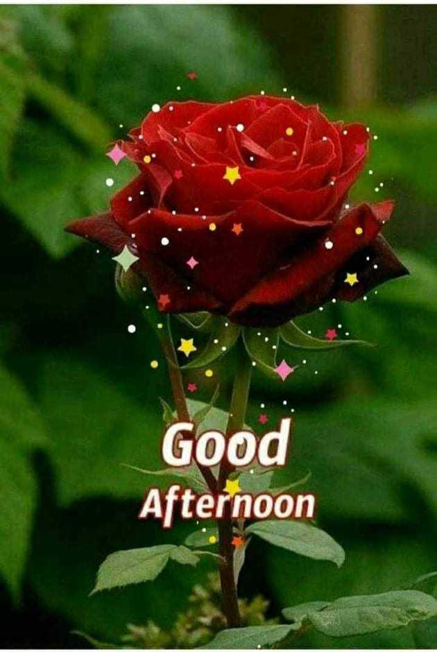 🕐शुभ दोपहर - Good Afternoon - ShareChat