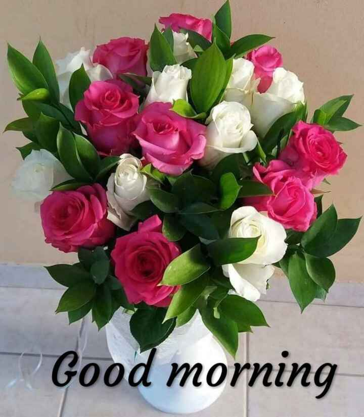 🕛 शुभ दोपहर - Good morning - ShareChat
