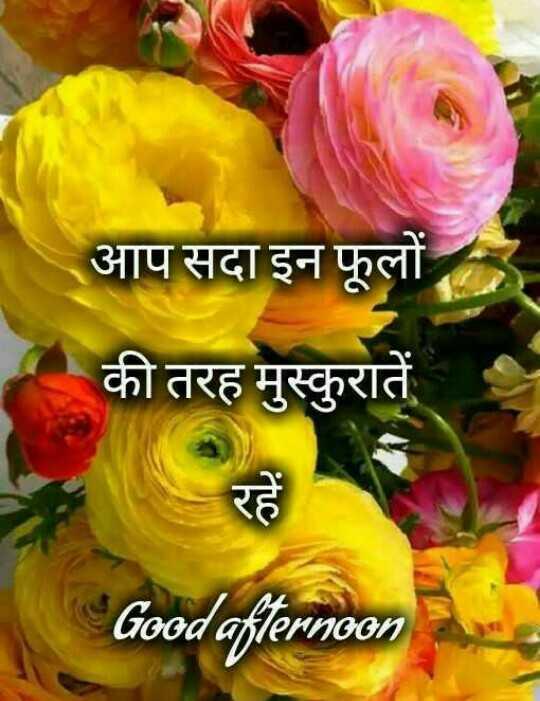 🕛 शुभ दोपहर☺ - आप सदा इन फूलों की तरह मुस्कुरातें Good afternoon - ShareChat
