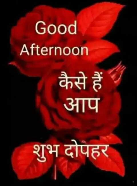 🕛 शुभ दोपहर☺ - Good Afternoon कैसे हैं । आप शुभ दोपहर - ShareChat