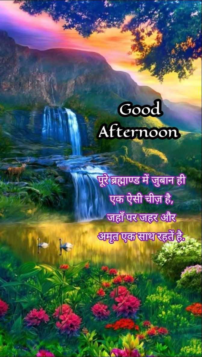 🕛 शुभ दोपहर☺ - Good Afternoon पूरे ब्रह्माण्ड में जुबान ही एक ऐसी चीज़ है , जहाँ पर जहर और अमृत एक साथ रहतें है . - ShareChat