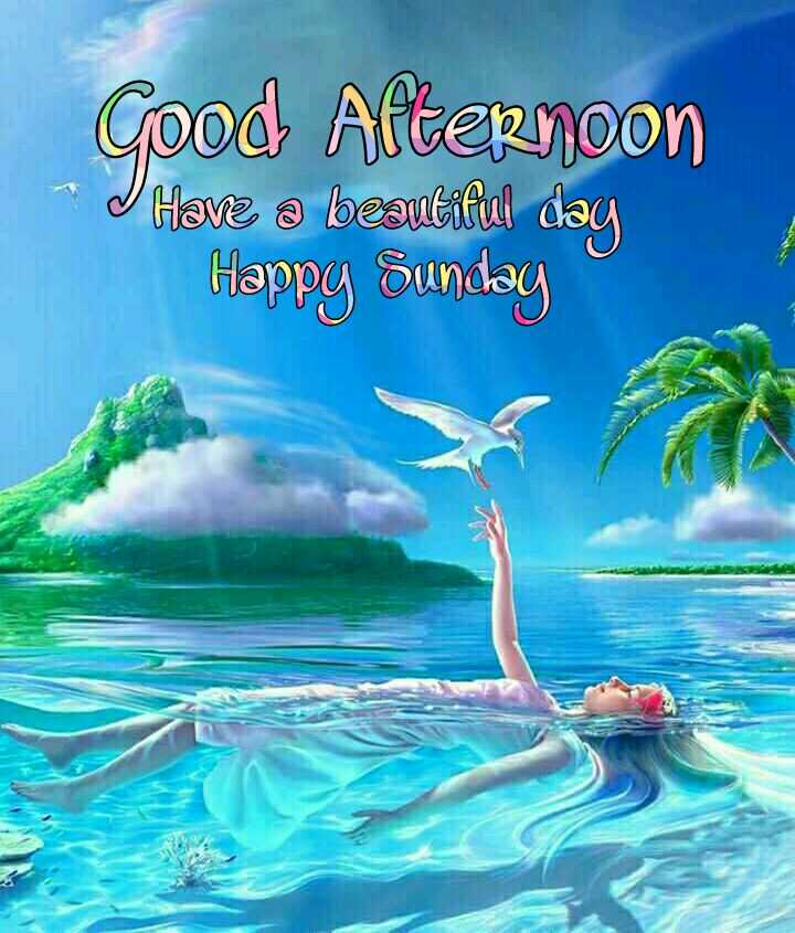 🕛 शुभ दोपहर - Good Afternoon * I Have a beautiful day Happy Sunday - ShareChat