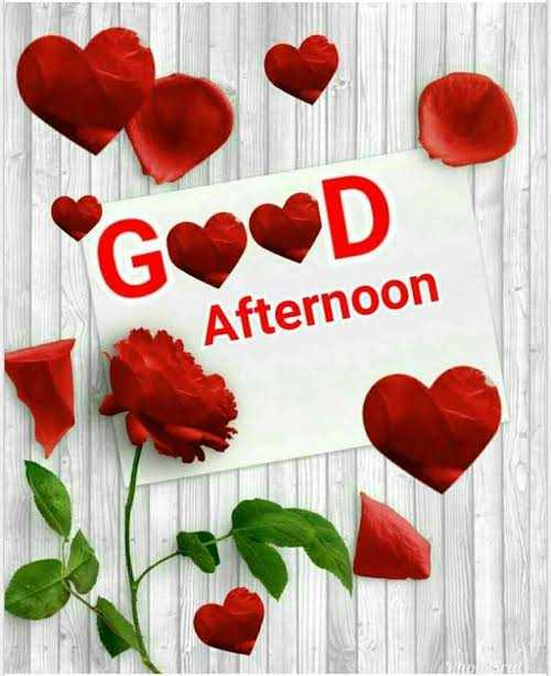 🕛 शुभ दोपहर☺ - GOOD Afternoon - ShareChat