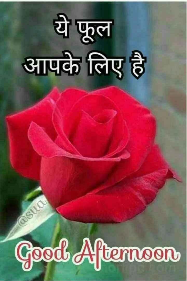 🕛 शुभ दोपहर☺ - 1 . ये फूल आपके लिए है @ sua Good Afternoon - ShareChat