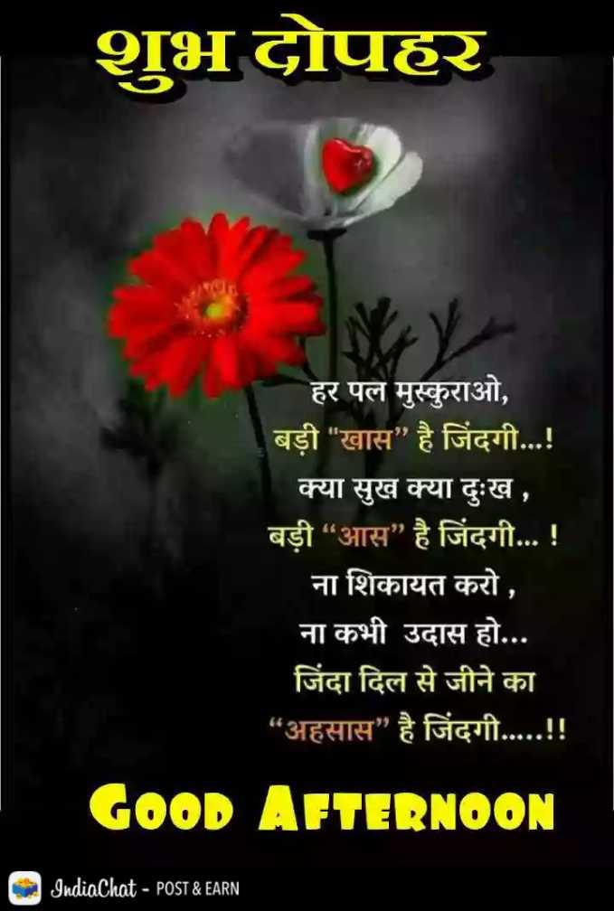 """🕛 शुभ दोपहर☺ - शुभ दोपहर हर पल मुस्कुराओ , बड़ी खास है जिंदगी . . . ! क्या सुख क्या दुःख , बड़ी """" आस है जिंदगी . . . ! ना शिकायत करो , ना कभी उदास हो . . . जिंदा दिल से जीने का """" अहसास है जिंदगी . . . . . ! ! GOOD AFTERNOON IndiaChat - POST & EARN - ShareChat"""