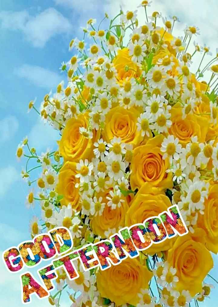 🕛 शुभ दोपहर☺ - AFTERNCON - ShareChat