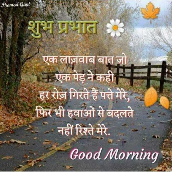 शुभ💓💓प्रभात💕💕💕💕 - Pramod Gupt शुभ प्रभात Kएक लाज़वाब बात जो . . . एक पेड़ ने कहीम हर रोज़ गिरते हैं पत्ते मेरे , फिर भी हवाओं से बदलते नहीं रिश्ते मेरे . Good Morning - ShareChat