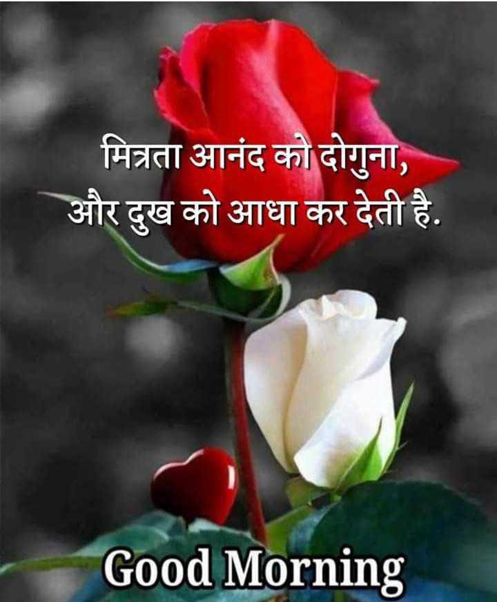 शुभ प्रभात# - मित्रता आनंद को दोगुना , और दुख को आधा कर देती है . Good Morning - ShareChat